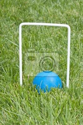 krokiet piłka siedzi pod hoop