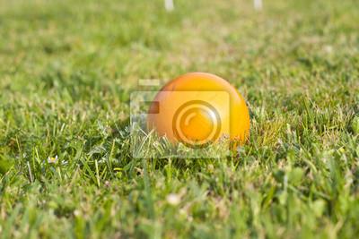krokiet piłkę