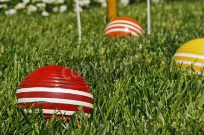 krokiet piłki na zielonej trawie