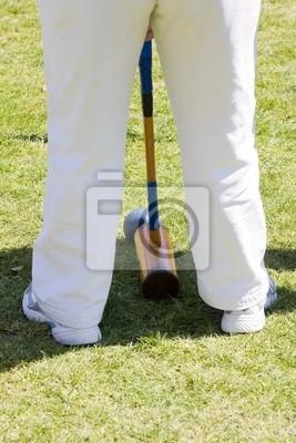 Krokiet player, Mallet i Ball