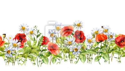 Kwiatowy granicy poziomej. Akwarela kwiaty łąka, trawy, zioła. Jednolite ramy