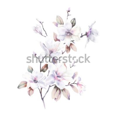 Naklejka Kwiaty magnolii akwarela