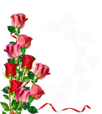 Naklejka kwiaty róża na białym tle.