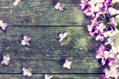 Naklejka kwiaty w tle