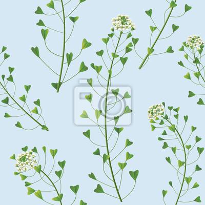 Kwiaty wzór