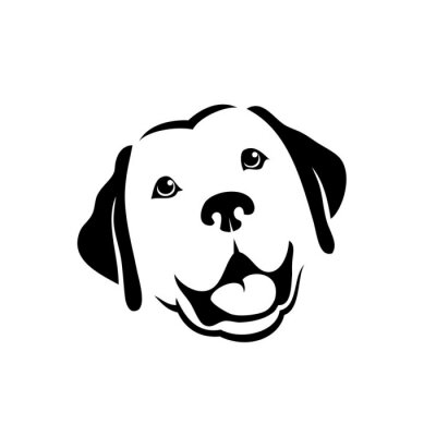 Naklejka Labrador retriever