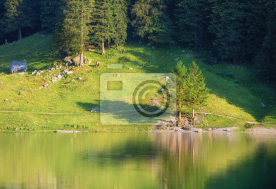 Naklejka Landscape in the Switzerland. Forest and lake. Reflection on the water surface. Natural lndscape at the summer time. Switzerland - image