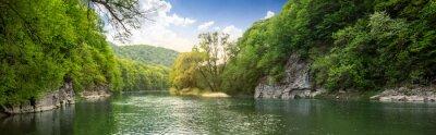 Naklejka las rzeka z kamieni na brzegu