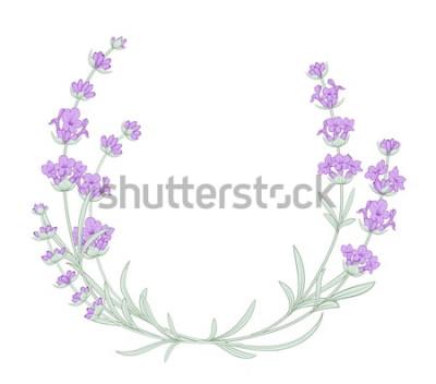 Naklejka Lawendowy elegancki wieniec z bukietem kwiatów na białym tle. Kwiat lawendy na zaproszenie na ślub. Rama z kwiatami lawendy. Ilustracji wektorowych.