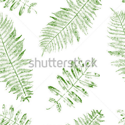 Naklejka Leaves of mountain ash and fern. Seamless pattern with leaf prints. Vector illustration.
