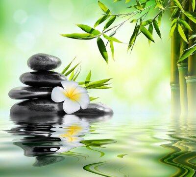 Naklejka leczenia uzdrowiskowego masaż w ogrodzie z bambusa i frangipani