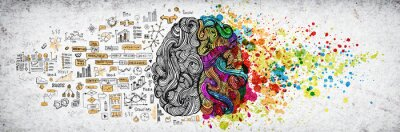 Naklejka Left right human brain concept, textured illustration. Creative left and right part of human brain, emotial and logic parts concept with social and business doodle illustration of left side, and art