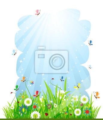 Naklejka Letnia łąka piękne