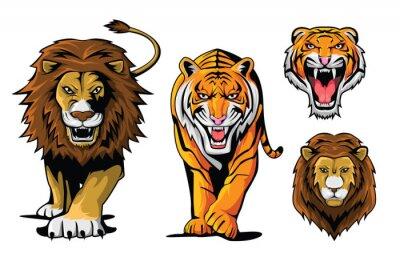 Naklejka Lew i tygrys