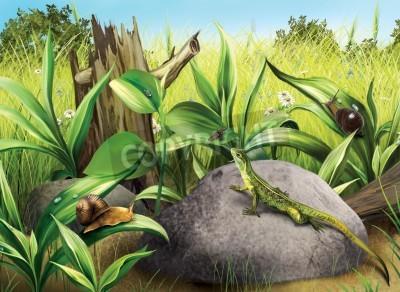 Naklejka Lisard polowania latać Ślimaki, zielona trawka, dziennik