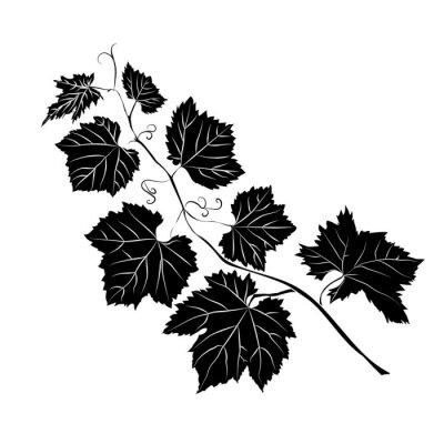 Naklejka Liście rośliny barokowe winogron