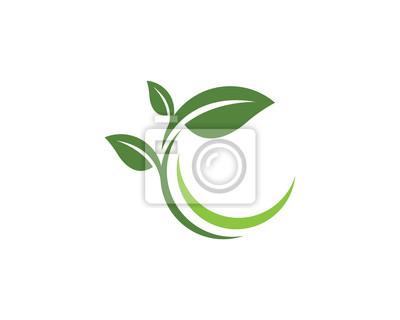 Naklejka Logowie zielona liść ekologii natury elementu wektoru ikona