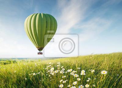 Lotniczy ballon nad pole z kwiatami przy lato czasem. Koncepcja i pomysł przygody