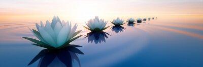 Naklejka Lotusblüten im Sonnenuntergang