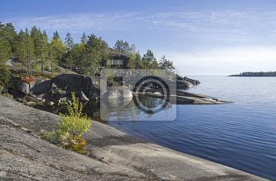 Naklejka Ma? A brzoza na skalistym brzegu jeziora Ladoga.