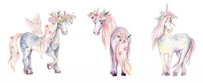 Naklejka Magic Unicorn, Pegasus and Pony. Akwarela ilustracja, piękna
