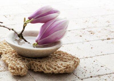 Naklejka magnolia flowers for soft exfoliation