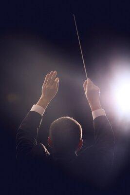 Naklejka Male conductor on dark background, back view