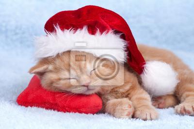Mały kot na sobie kapelusz Mikołaja spania na poduszce