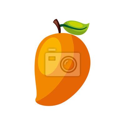 Naklejka Mango świeże owoce ikonę ilustracji wektorowych projektowania