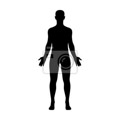 Naklejka Mężczyzna ludzkie ciało należące do dorosłego człowieka