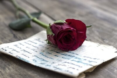 Naklejka Miłość list i wzrosła