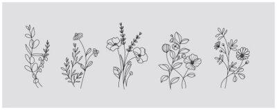 Naklejka minimal botanical graphic sketch drawing, trendy tiny tattoo design, floral elements vector illustration