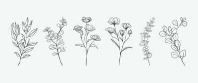 Naklejka Minimal botanical hand drawing design for logo and wedding invitation. Floral line art.  Flower and leaves design collection for bouquets decoration, card and packaging background.