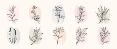Naklejka Minimal botanical hand drawing design for logo and wedding invitation. Floral line art.  Flower and leaves on watercolour background design collection for bouquets decoration, invite, packaging design