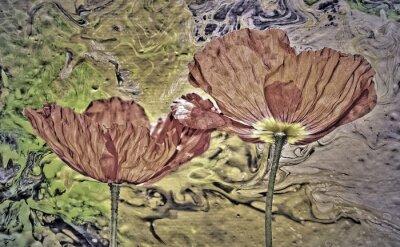 Mohnblüten, graphisch verfremdet