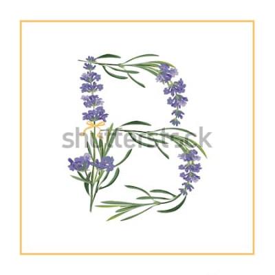 Naklejka Monogram litery B. Alfabet znak retro z inicjałem kwiat lawendy. Akwarela styl, botaniczna ilustracja na białym tle. Czcionka sztuka wektor czcionki