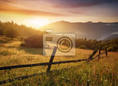 Naklejka Naturalny krajobraz lato