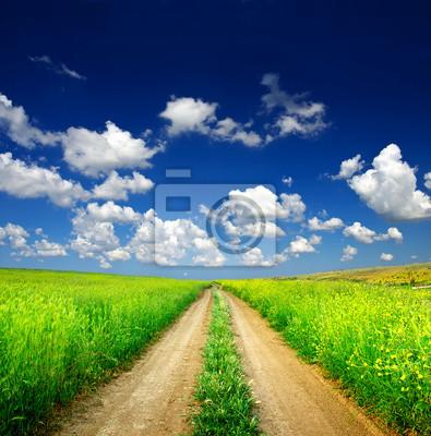Naklejka Naturalny krajobraz w okresie letnim.