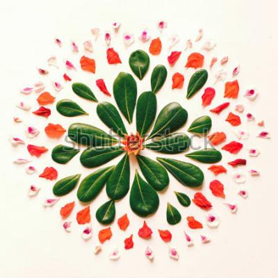 Naklejka Naturalny kwiat mandali płaskie leżą na białym tle z liści i kwiatów. Artystyczny mandala symetryczny przygotowania, ilustracja ręcznie kwiecista sztuka.