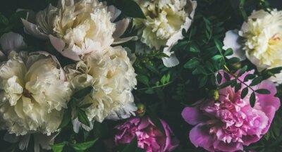 Naklejka Naturalny kwiatowy wzór, tekstury i tła. Białe i różowe kwiaty piwonii na ciemnym tle, widok z góry, selektywne fokus. Koncepcja karty z pozdrowieniami latem, Walentynki lub Kobiety