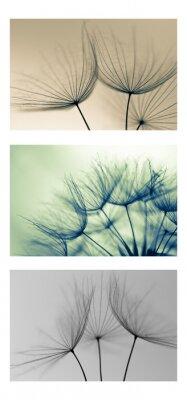 Naklejka nią, rolnictwo, jesień, tło, piękny, niebieski, Cabba