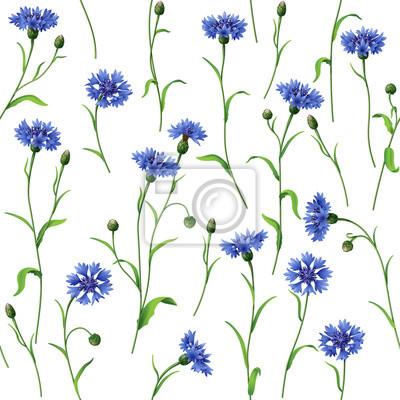 Niebieskie chabry wzór