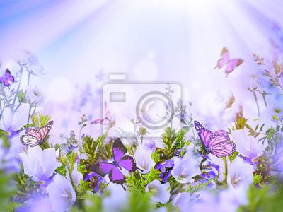 Niesamowite pola dzwony i stokrotki, kwiatowe tło z motyli. Kwiaty na wolności.