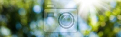 Naklejka Obraz z naturalnego abstrakcyjnym tle bliska