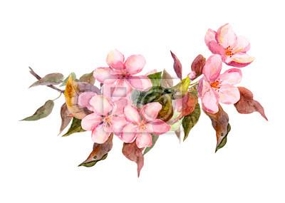 Oddział kwiat z różowe kwiaty. Akwarela