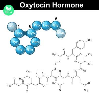 montaż oksytocyny