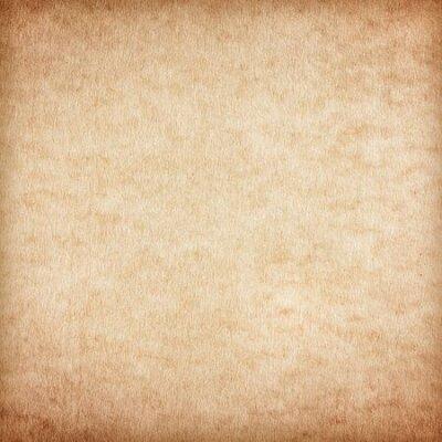 Naklejka Old Paper texture. vintage paper background or texture; brown paper texture.