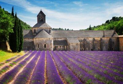 Naklejka Opactwo Senanque i pola lawendy, Francja