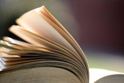 Naklejka Open book under sunlight outdoors. Education and wisdom concept