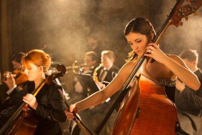 Naklejka Orchestra performing